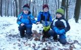 Stavění sovích sněhuláků