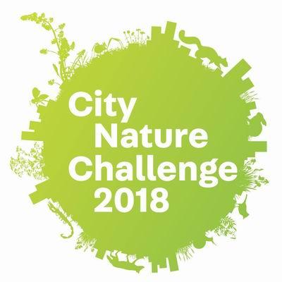 city-nature-challenge-2018-logo