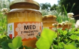 med z pražských lesů