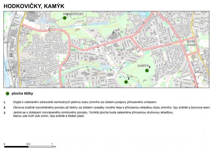 hodkovicky_kamyk