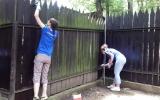 Natírání ohrad