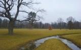 Královská obora Stromovka - bývalé dno rybníka