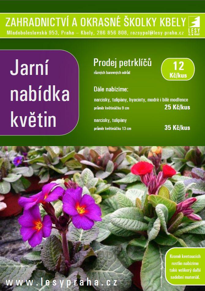 jarni-nabidka-banner-plny