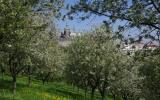 Seminářská zahrada na Patříně