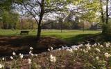 Starý park