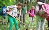 Výsadba lesa