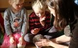 povídání o ježkovi