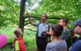 učíme se měřit výšku stromů