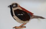 Textilní vrabci, ZŠ u svatého Štěpána, vítěz kategorie školáci