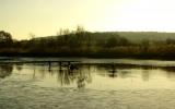 podzimní výlovy pražských rybníků jsou v plném proudu