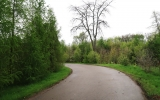 Horní areál Pralesa - kbelský lesopark