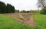 Horní areál Pralesa - budoucí zelené bludiště ve tvaru listu