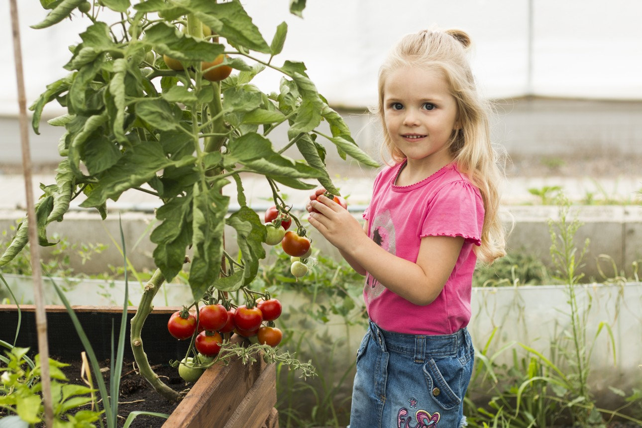 zahradnici