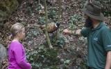 Do lesa za zvířátky