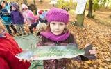 vylov rybnika - Dolni Pocernice