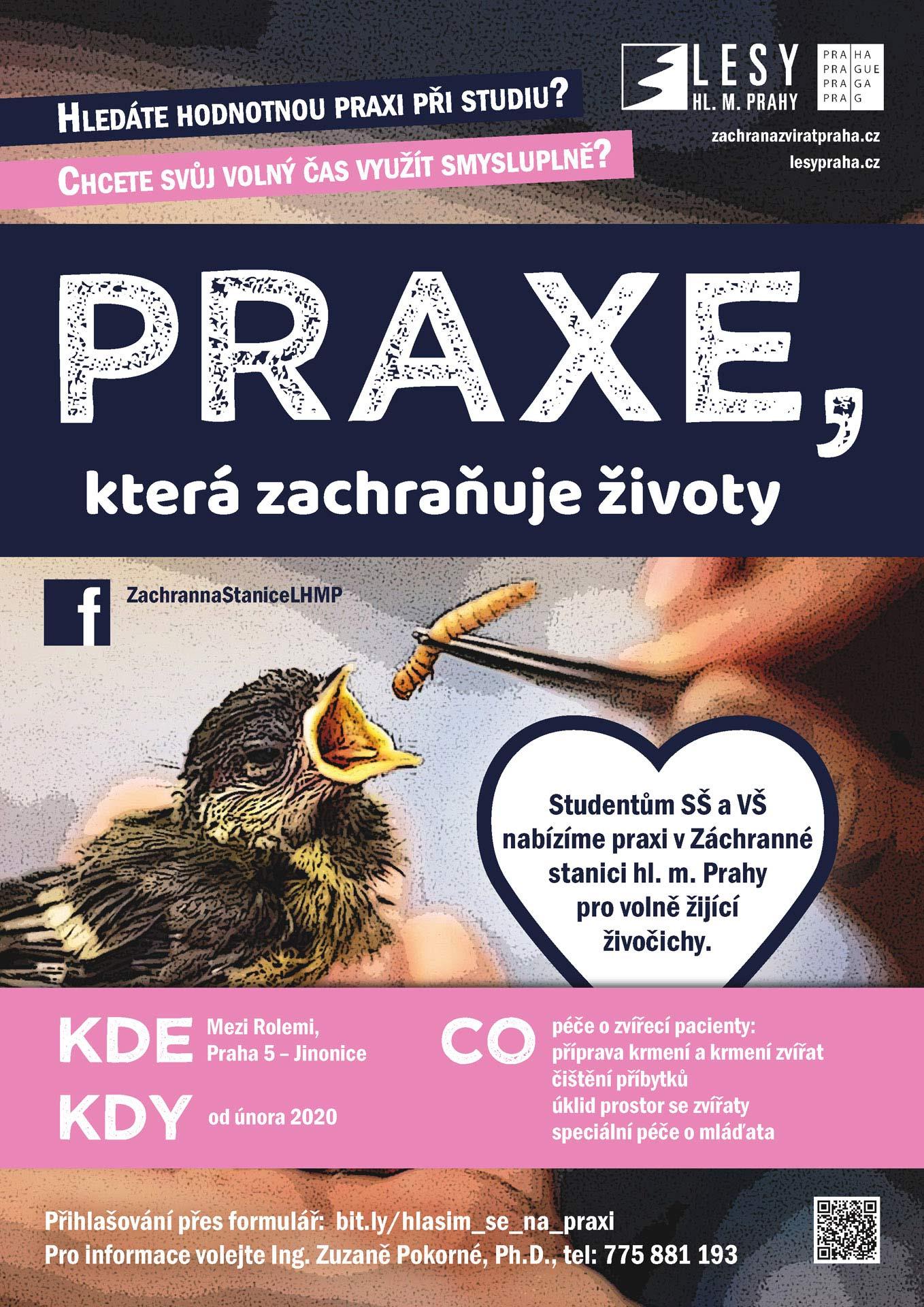 praxe_2019_2_nahled2