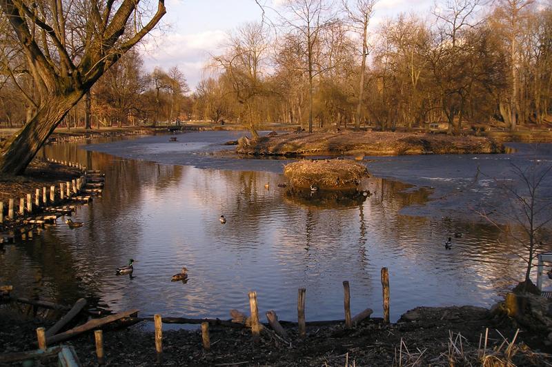 poškozené břehy jednoho z rybníků