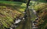 Stromovka - potůček ve starém parku