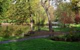 Stromovka - rybníky od Šlechtovky