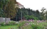 zahony-na-podzim