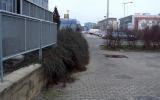 zeleň před nádražím se dočká obnovy
