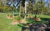 Stromovka bude mít 155 nových dřevin