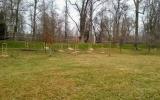 vysazené dřeviny ve Stromovce