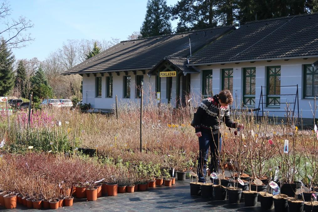 zahradnictvi